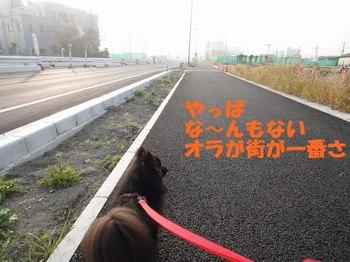 10月の銀座の続き.jpg
