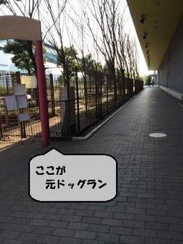 お台場8.JPG