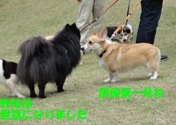 ユーカリが丘6.jpg