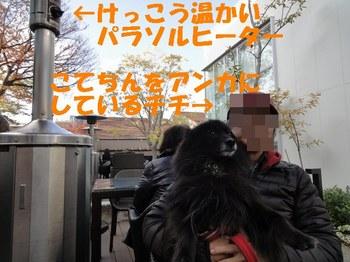 代官山蔦屋3.jpg