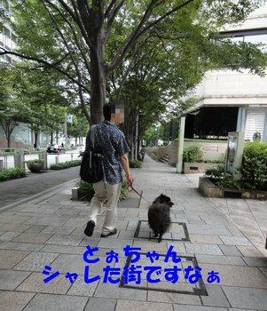 六本木散策1.jpg