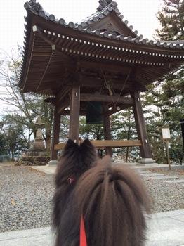 松山10.jpg
