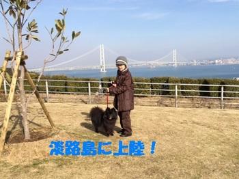 松山16.jpg
