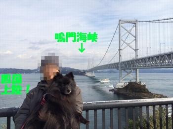 松山17.jpg