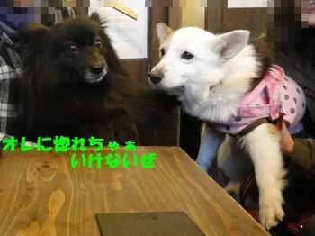 花鈴さんと遭遇1.jpg