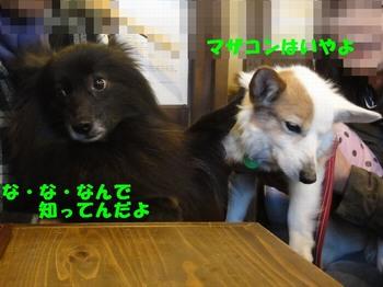 花鈴さんと遭遇2.jpg