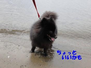 虎鉄 ガンダム6.jpg