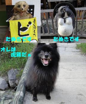 虎鉄いん草津5.jpg