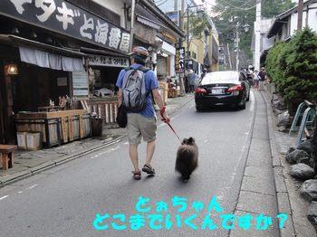 虎鉄いん草津9.jpg