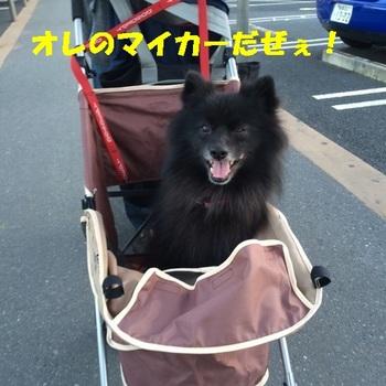 松山0.jpg