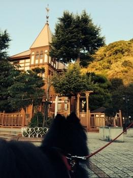 松山29.jpg