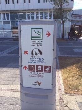 松山5.jpg