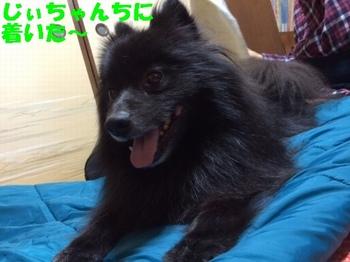 松山8.jpg