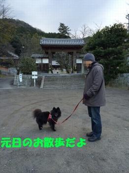 松山9.jpg